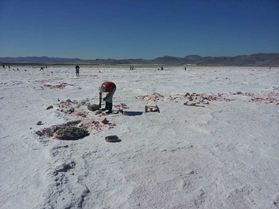 Halite Digging at Trona!